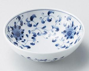 菊唐草4.0小鉢