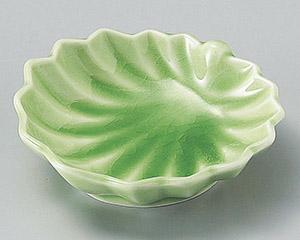 ヒワカエデ型平鉢