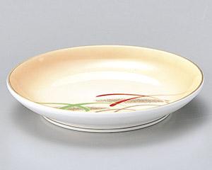 加茂川新丸3.0皿のみ
