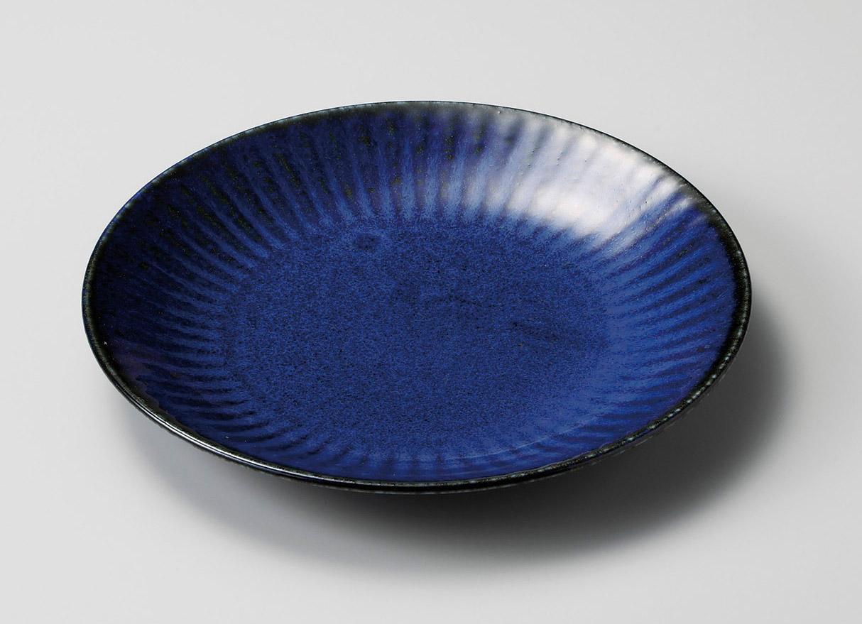 ネプチューン7.0皿