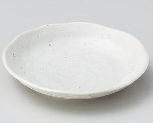 白唐津5.0皿