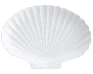 白磁シェル白8吋プラター