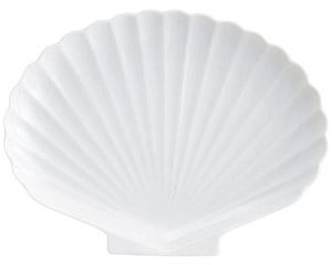 白磁シェル白9吋プラター