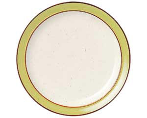 マンゴレインボーストン 9吋ミート皿
